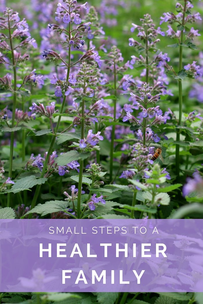 Small Steps to a Healthier Family