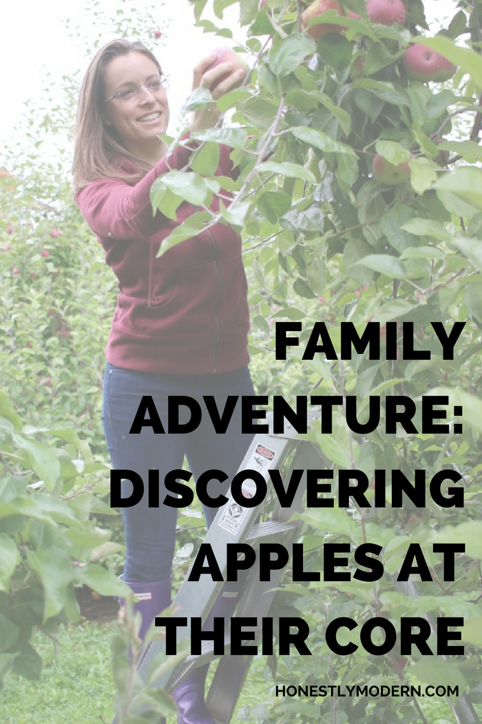 Spending a weekend visiting family in upstate New York, including a visit to an apple orchard and a family farm, gave my city boys a chance to food at its origin.