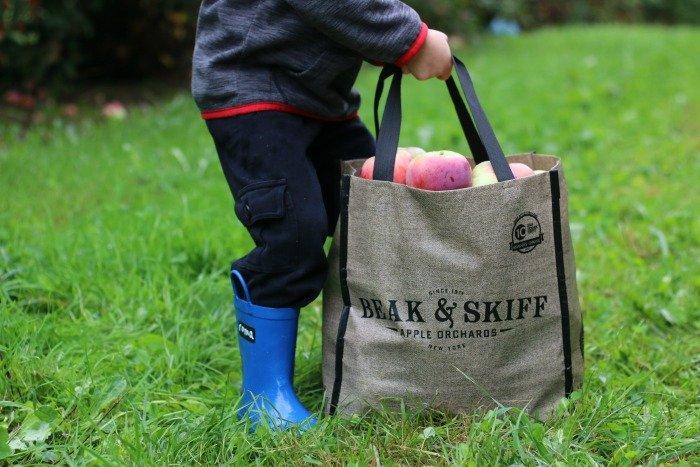 bag-of-beak-and-skiff-apples
