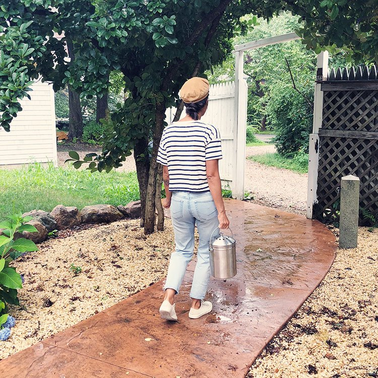 walking the compost to the compost pile or bin