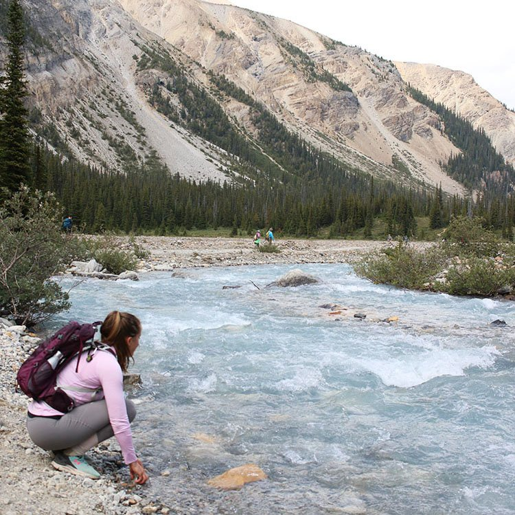 Beginner Tips for Planning a Vacation to a National Park