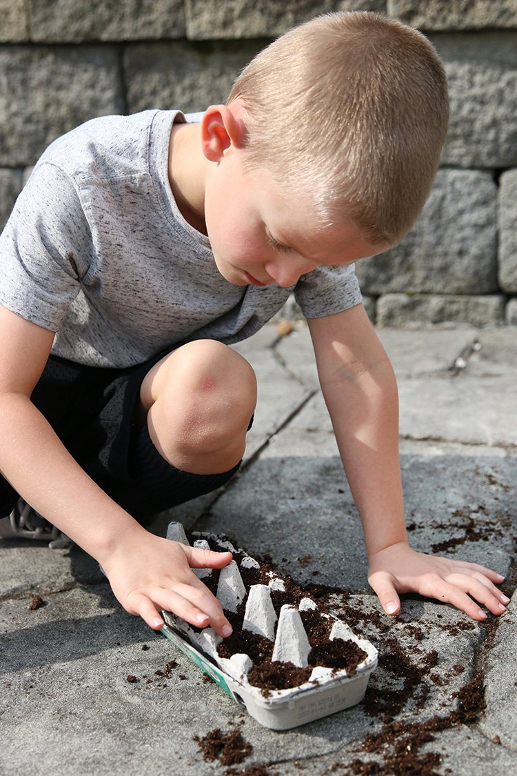 7 Places To Find Free Eco-Friendly Educational Projects For Kids