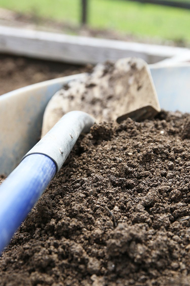 How To Know Where To Place Your Compost Bin
