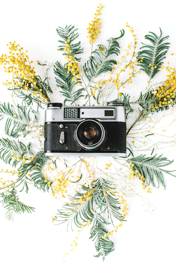 Tips To Easily Document Family Memories at Home