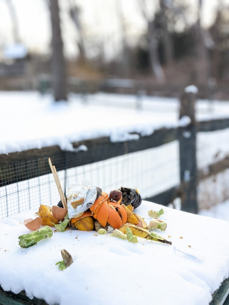 Can I Compost In Winter?