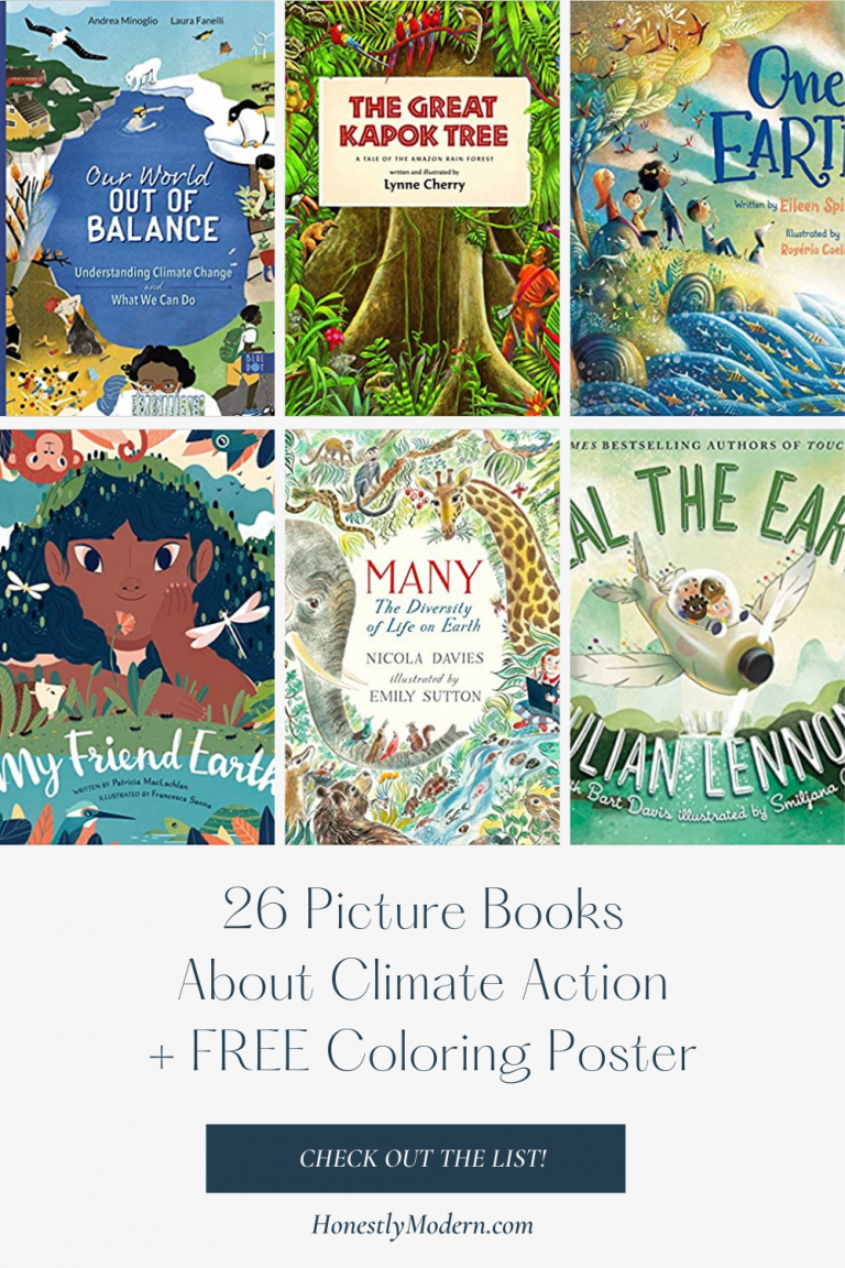 Climate Action | Picture Book List for United Nations Sustainable Development Goal #13