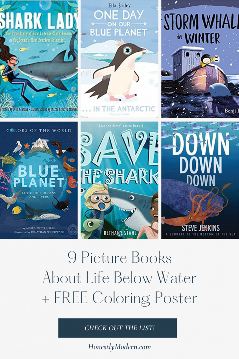 Life Below Water | Picture Book List For United Nations Sustainable Development Goal #14