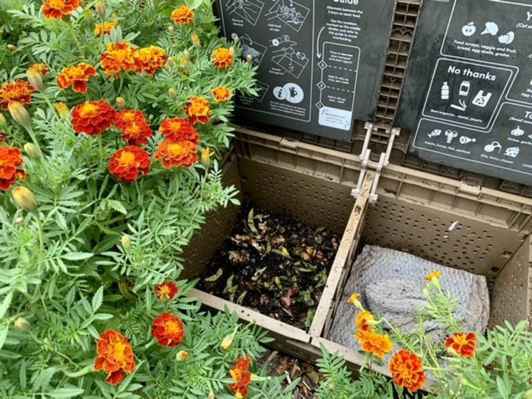 How To Compost At Home | Subpod Vermicomposting