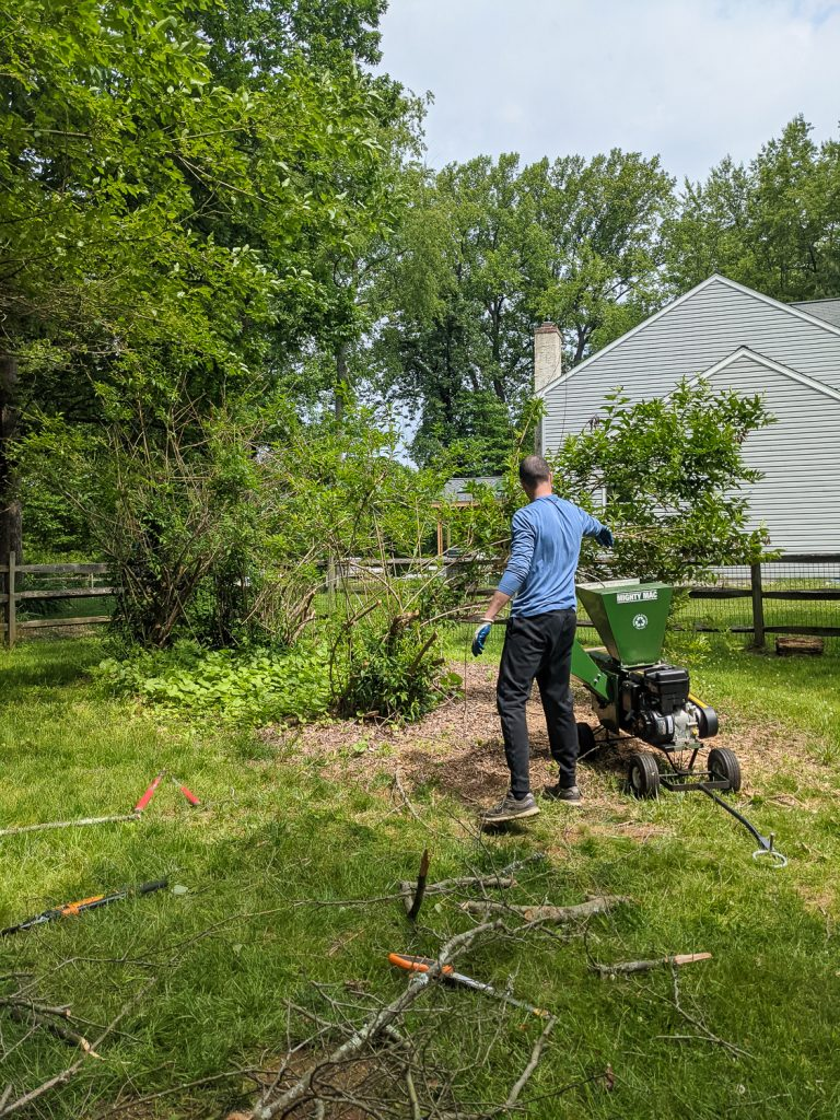 8 Eco-friendly Ways to Dispose of Yard Waste