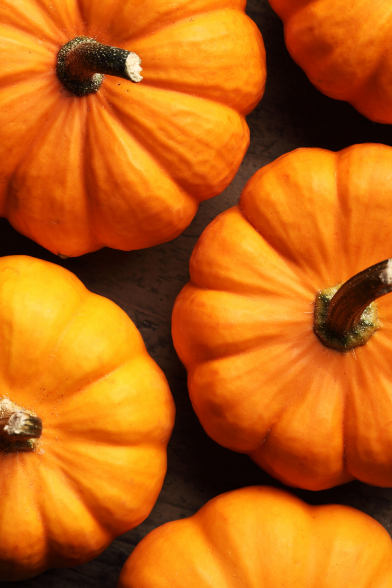 Pumpkin Recycling | 10 Sustainable Ways To Dispose of Pumpkins After Halloween