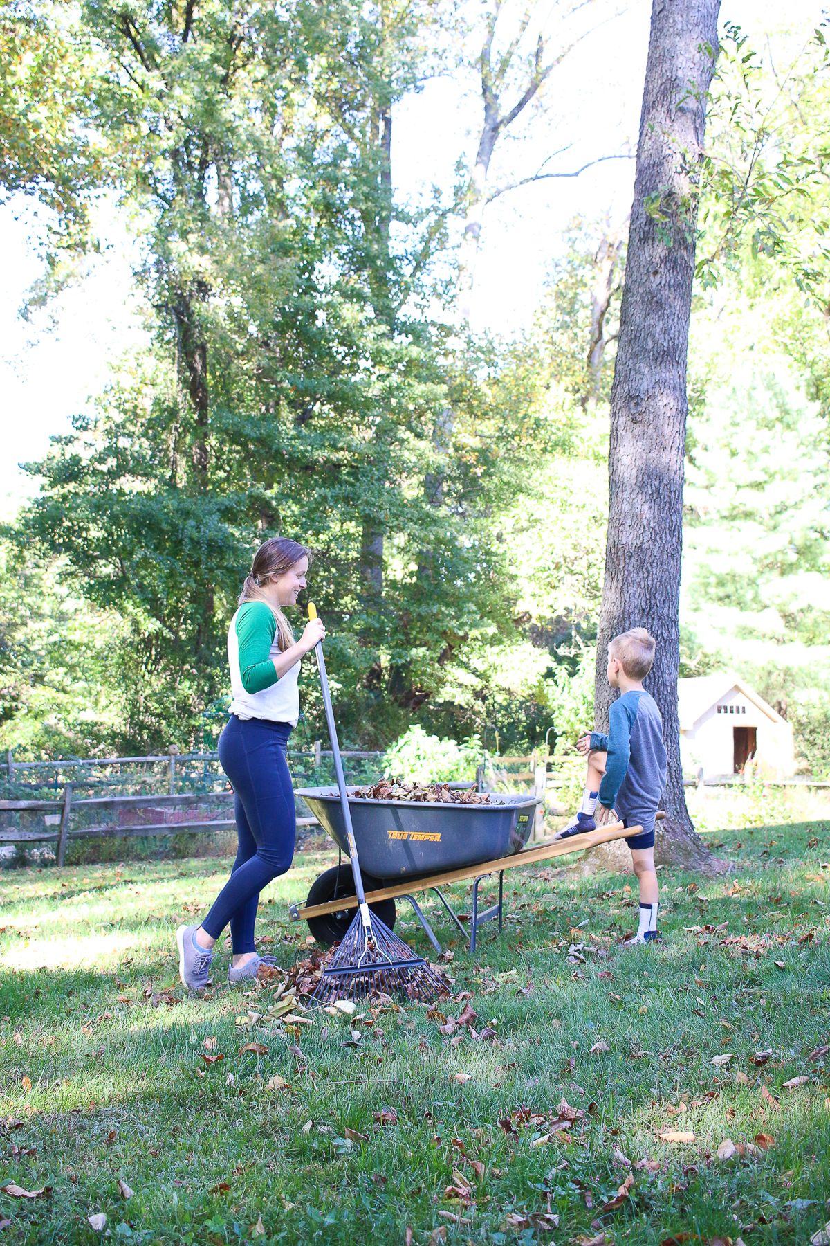 5 Ways To Compost Leaves