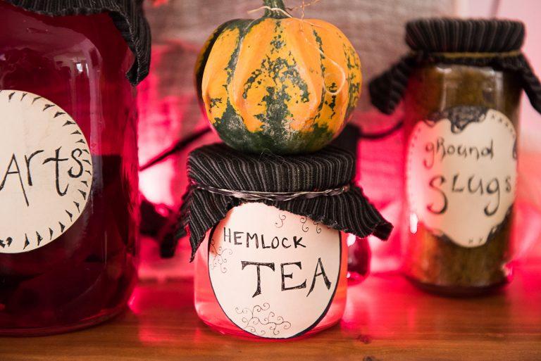 20 Zero Waste Halloween Decoration Ideas